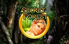 Покер Secret Forest на биткоины
