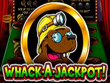 В казино Биткоин автомат Whack A Jackpot с бонусами